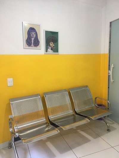 Clinica Veterinaria Samucao